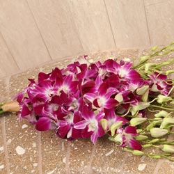 Orchid Hand Tied Bouquet